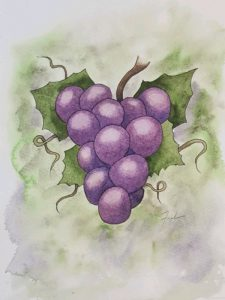 Resveratrol from Grapes